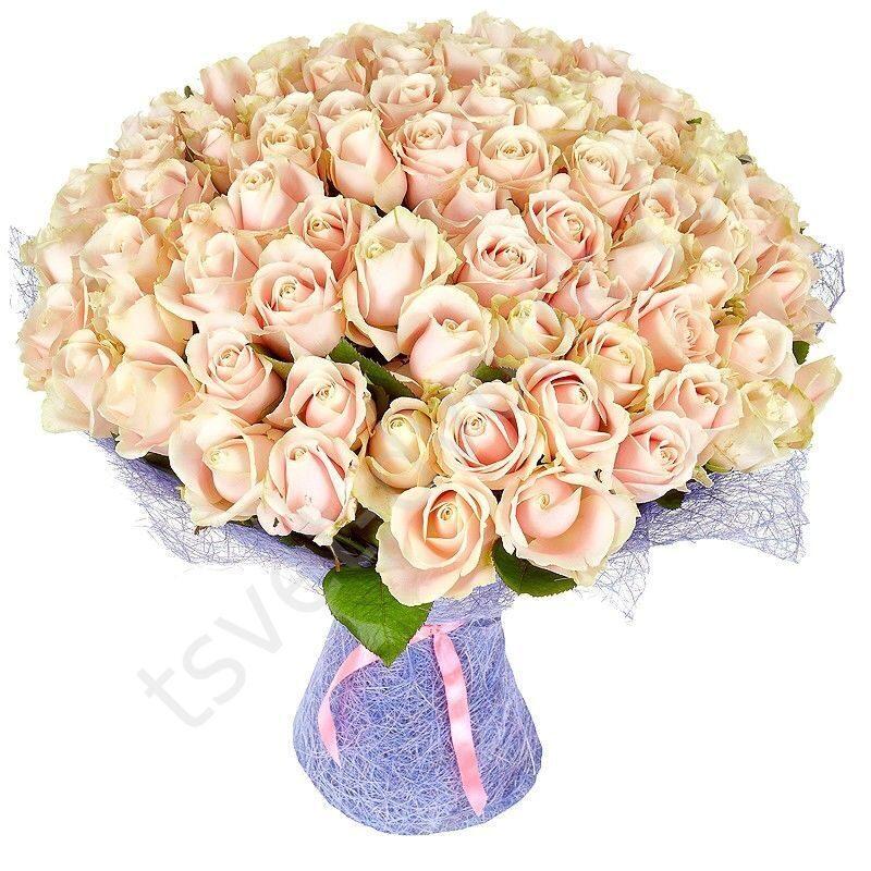 Розы купить недорого букет из цветов доставка по санкт-пете