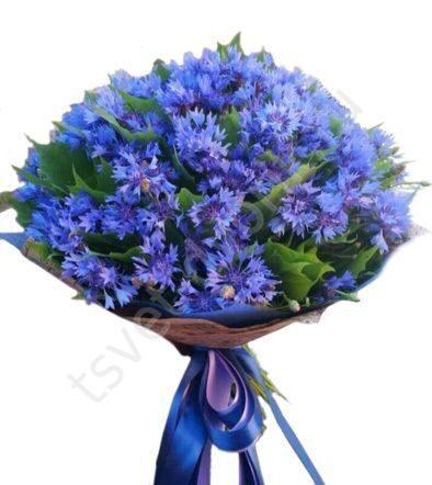 Заказать букет из васильков москва луковичные цветы в краснодаре купить