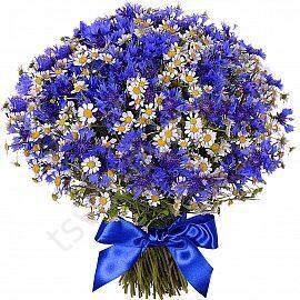 Букет из васильков заказать запорожье где купить розы оптом